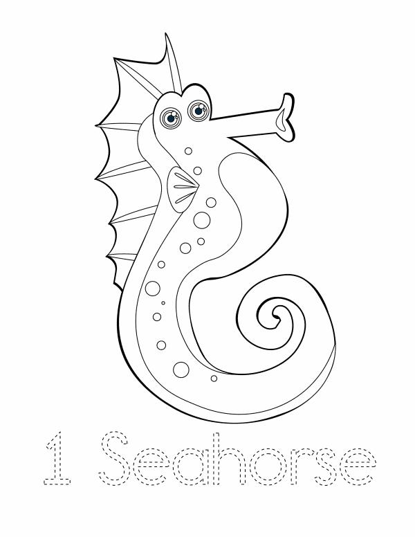 1 Seahorse