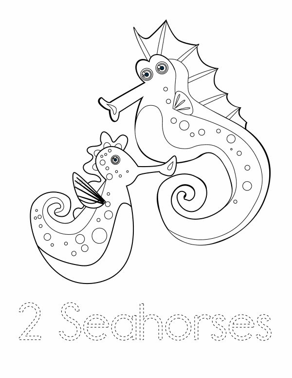 2 Seahorses