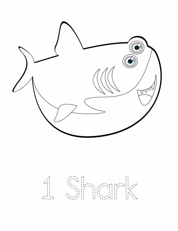 1 Shark
