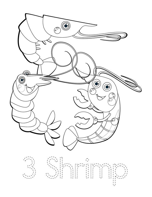 3 Shrimp
