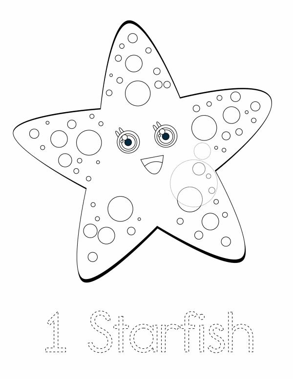1 Starfish