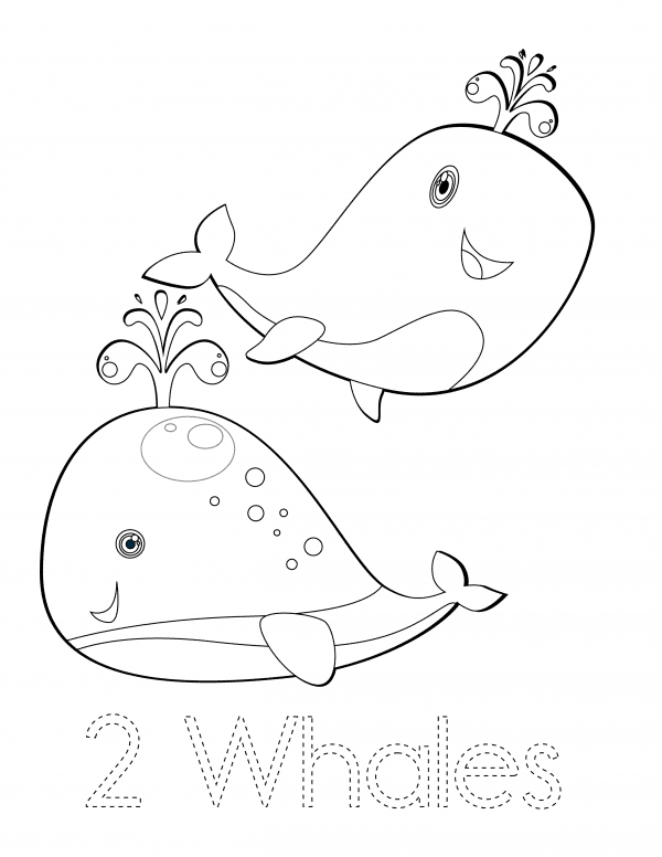 2 Whales