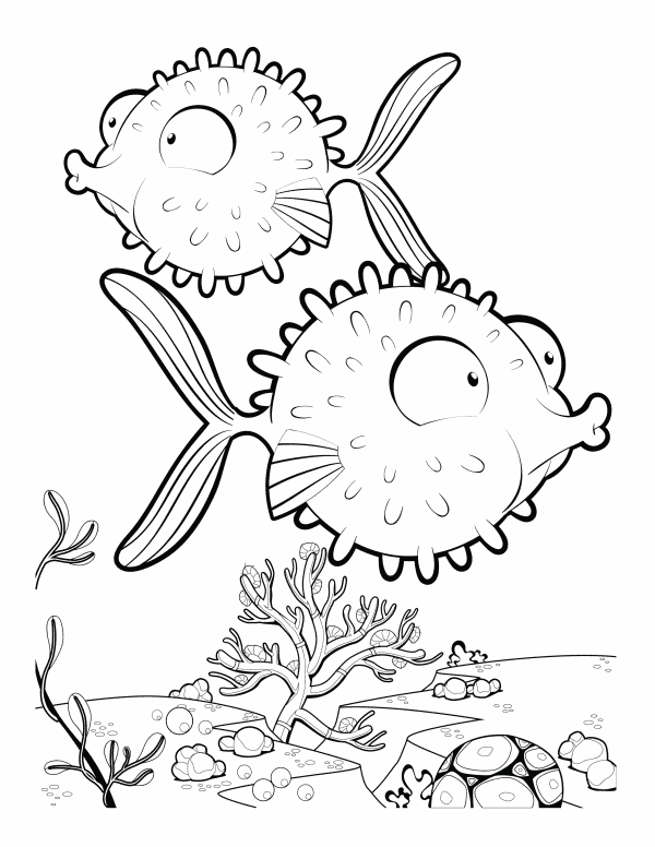 2 Pufferfish Colouring