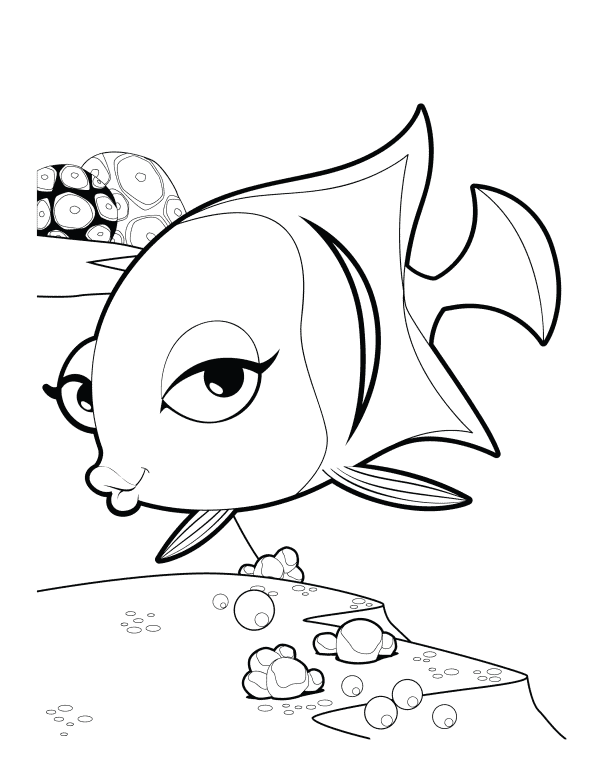 Angelfish Colouring