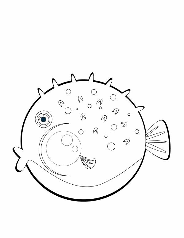 Pufferfish 3