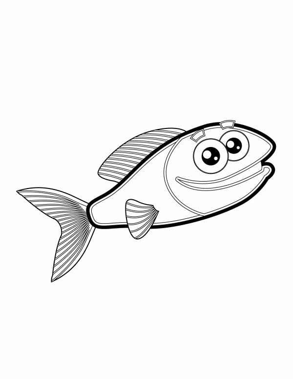 Fishy 4