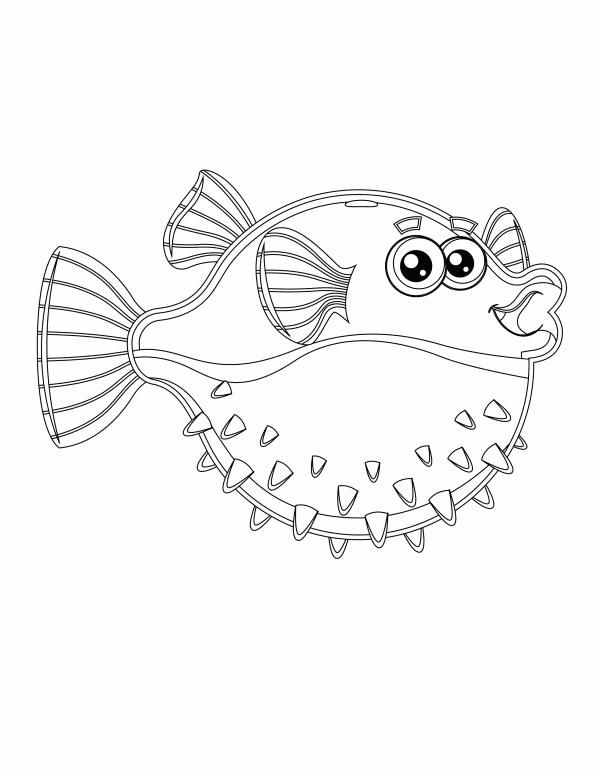 Fishy 5