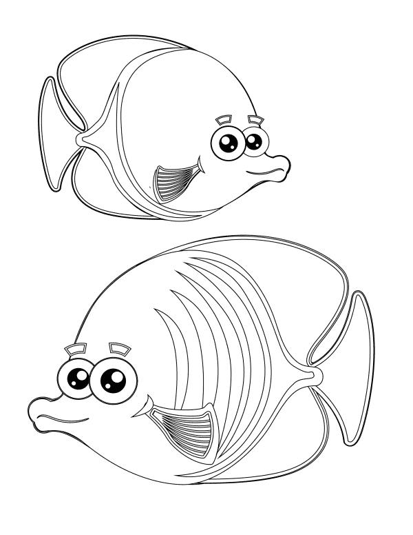 2 Fish