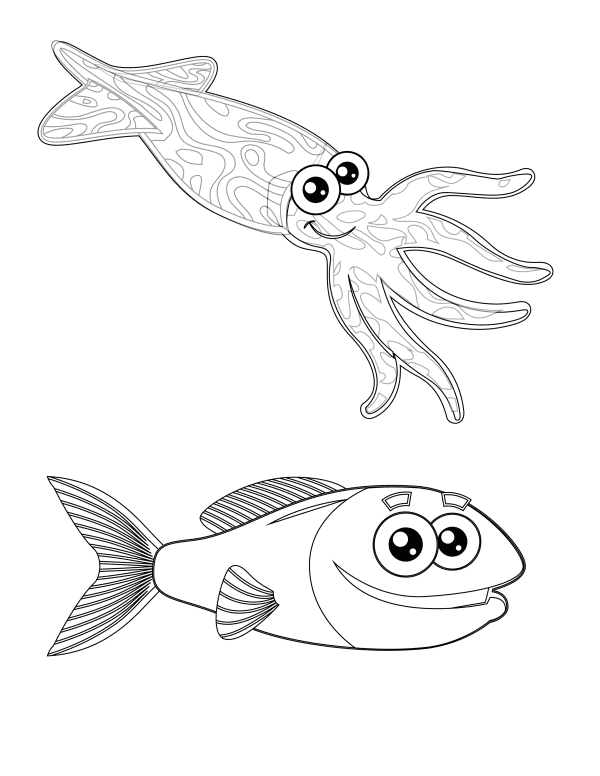 Squid And Fish